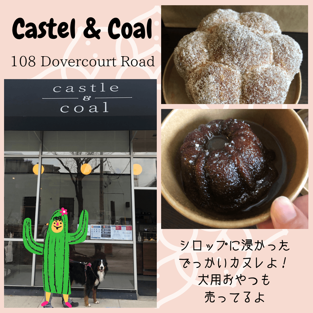 castle&coalの紹介